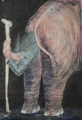 Elephant's Pregnancy
