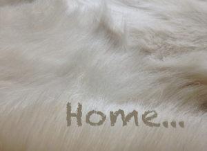 Home…