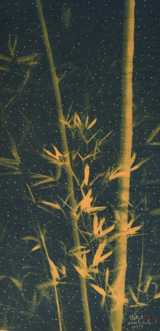 Bamboo 10