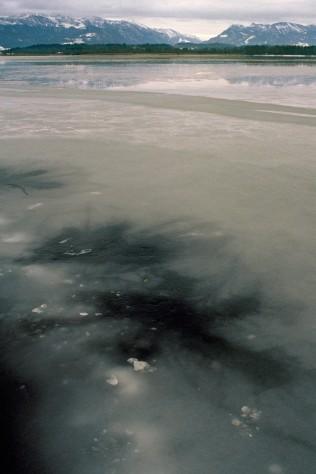 Landscape- Ink- Ice/ 1B