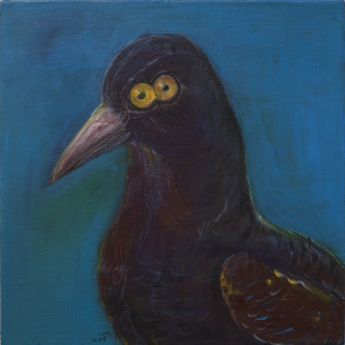 Bird with compound eye
