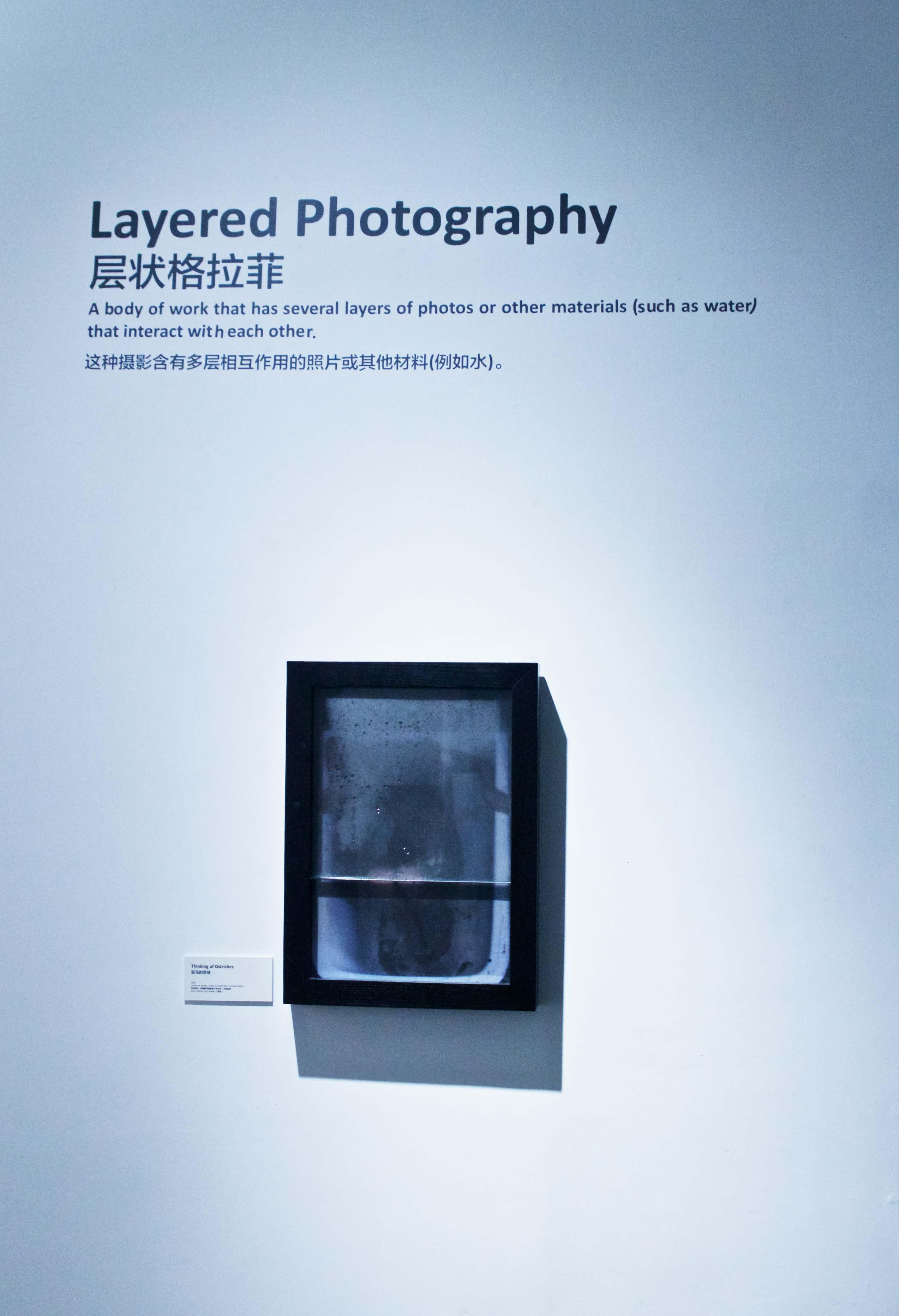 Zane Mellupe Solo Exhibition @ The Bund Art Museum, Shanghai 40