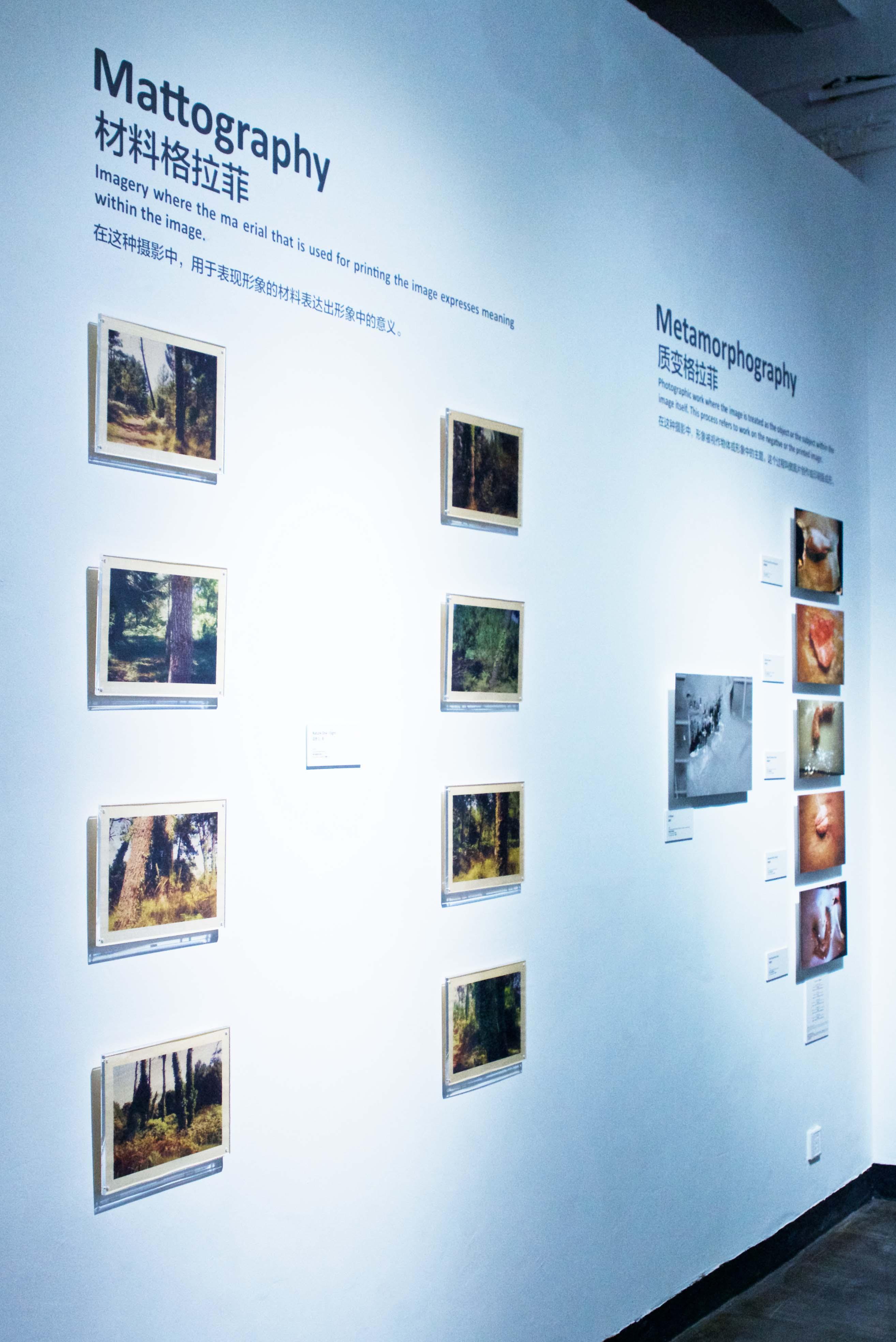 Zane Mellupe Solo Exhibition @ The Bund Art Museum, Shanghai 41